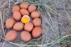 在秸杆巢的鸡鸡蛋在老木背景的 免版税库存照片