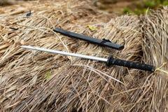 在秸杆的一把木剑 免版税库存照片