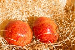 在秸杆的成熟红色石榴在木箱子在明亮的阳光,选择聚焦下 免版税库存图片