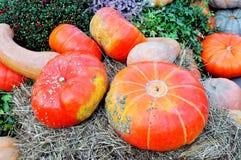 在秸杆的橙色和黄色南瓜 免版税图库摄影