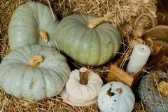 在秸杆的秋天南瓜 免版税库存图片