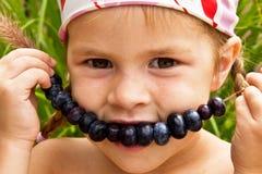 在秸杆的蓝莓 免版税库存照片