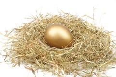在秸杆的金黄鸡蛋 库存图片