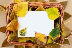 在秸杆篮子的秋叶与白色拷贝空间卡片 库存图片