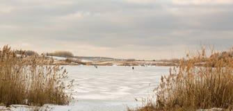 在稀薄的冰的冬天渔 免版税库存照片