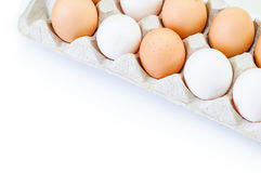 在程序包的鸡蛋 免版税库存照片