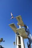 在空中的男性游泳者潜水 免版税库存图片