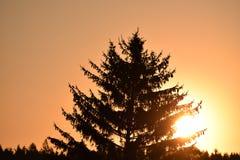 在空气的太阳 免版税库存图片