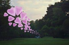 在空气的桃红色心脏爱气球浮游物与在公园的自行车 图库摄影