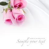 在空白丝绸的桃红色玫瑰 免版税库存图片