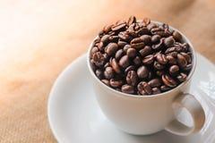在空白杯子的咖啡豆 免版税库存照片