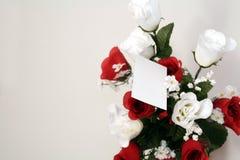 在空白的玫瑰 图库摄影