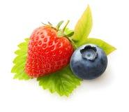 在空白背景和蓝莓查出的草莓 免版税库存照片