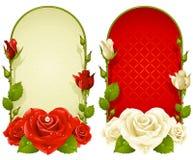 在空白背景查出的向量玫瑰色框架