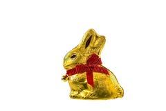 在空白背景查出的巧克力兔宝宝 免版税库存照片