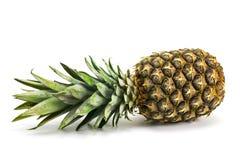 在空白背景查出的成熟全部的菠萝 库存图片