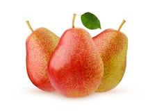 在空白背景查出的梨 全部的果子 免版税库存图片