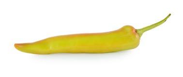 在空白背景查出的橙色胡椒 库存照片