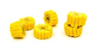 在空白背景查出的煮沸的玉米 免版税图库摄影