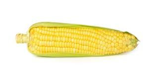 在空白背景查出的玉米 免版税库存图片