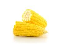 在空白背景查出的玉米 库存照片