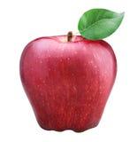 在空白背景查出的红色苹果 库存图片