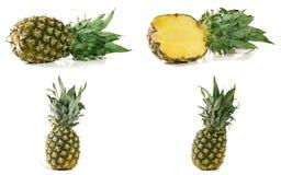 在空白背景查出的菠萝 集合或汇集 免版税库存照片