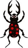 在空白背景的动画片甲虫 库存照片