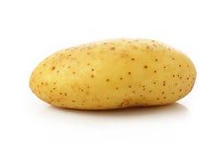 在空白背景的土豆 免版税库存图片