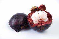 在空白背景的山竹果树果子 免版税库存照片