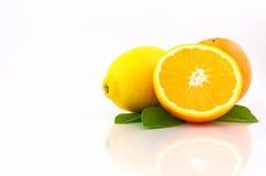 在空白背景的桔子和柠檬 图库摄影