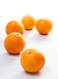 在空白背景的桔子 免版税库存图片
