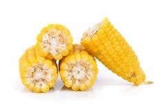 在空白背景的玉米 免版税图库摄影