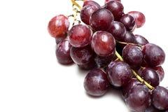 在空白背景的红葡萄 免版税库存照片