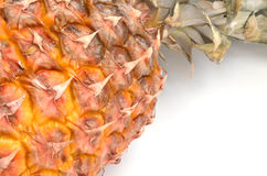 在空白背景的菠萝 免版税库存图片