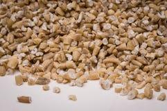 在空白背景的钢碎燕麦。 免版税库存图片