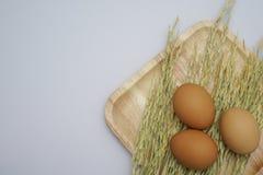 在空白背景的鸡蛋 免版税库存照片