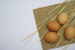 在空白背景的鸡蛋 库存图片