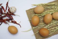 在空白背景的鸡蛋 免版税库存图片