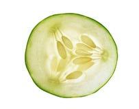 在空白背景的黄瓜 库存照片