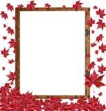在空的木制框架的秋天落的叶子在白色ba 免版税库存照片