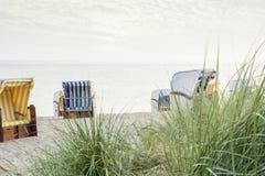 在空的海滩的山毛榉椅子 免版税库存照片