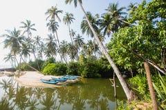 在空的海滩的绿色棕榈和渔夫` s小船在Tangalle,斯里兰卡 库存图片