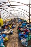 在空的难民营的帐篷在Roeszke 免版税库存照片