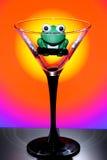 在空的马蒂尼鸡尾酒玻璃的青蛙 库存照片