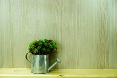 在空间木背景的人为植物家装饰 库存图片