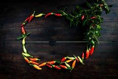 在空间木桌上的新鲜的辣椒给的t做广告 库存图片