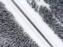 在穿过积雪的具球果森林的冷漠的溜滑路的顶视图 免版税库存照片