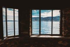 在窗口后的自然 库存照片
