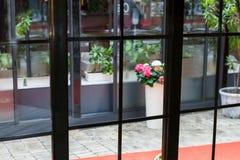 在窗口后的花 库存图片